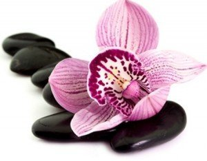 Fragrance oil for pour and melt soap Black Orchid