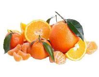 Fragrance oil for pour and melt soap Citrus